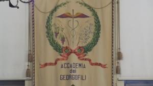 Georgofili stendardo