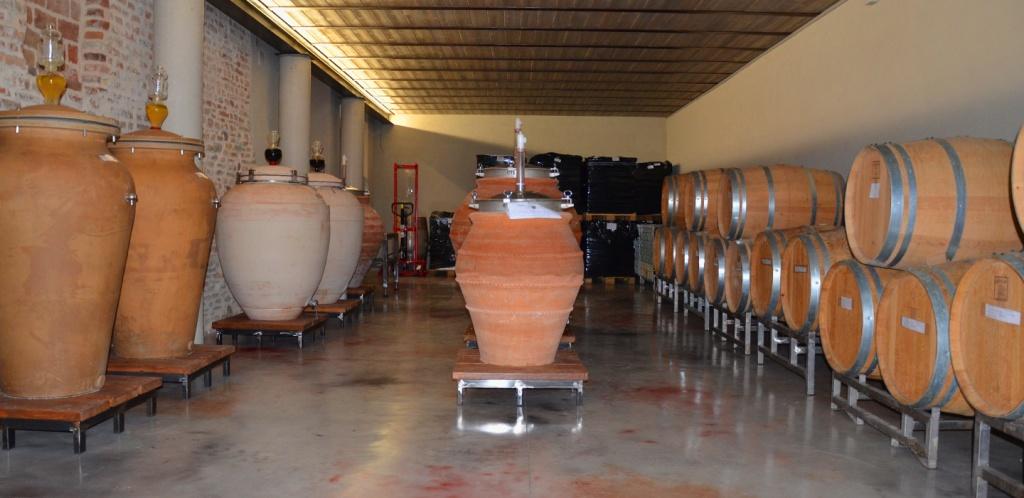 N. 8 Novembre 2020 – Con Agricola Ronchi a Barbaresco